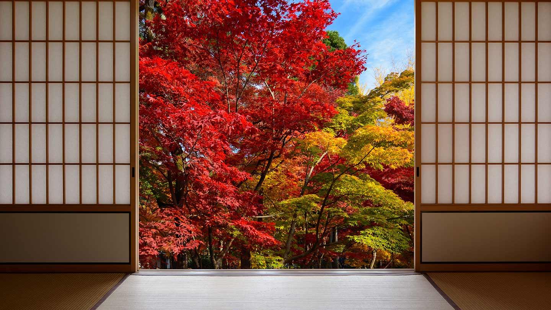 Zen Den: Japanese Design to De-Stress Your Space